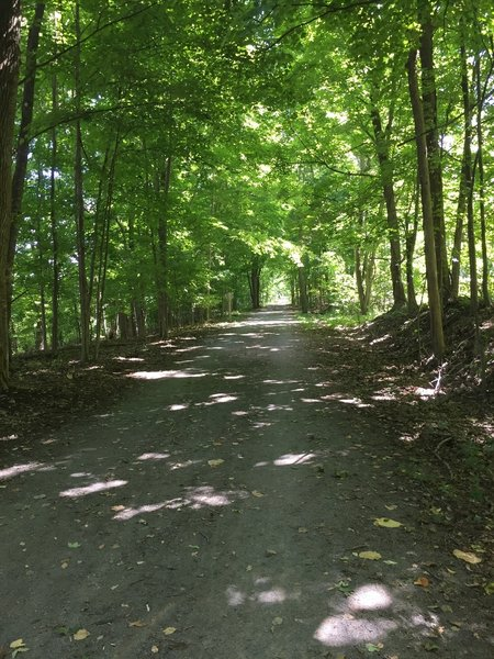 The Auburn Trail is truly beautiful.