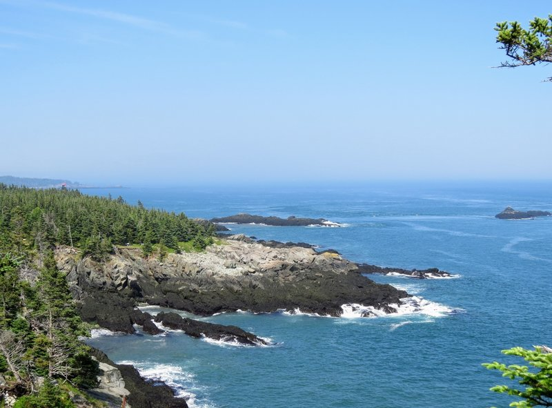 Off the Coastal Trail, look closely in the forest on the left to see the tip of West Quoddy Head Lighthouse.