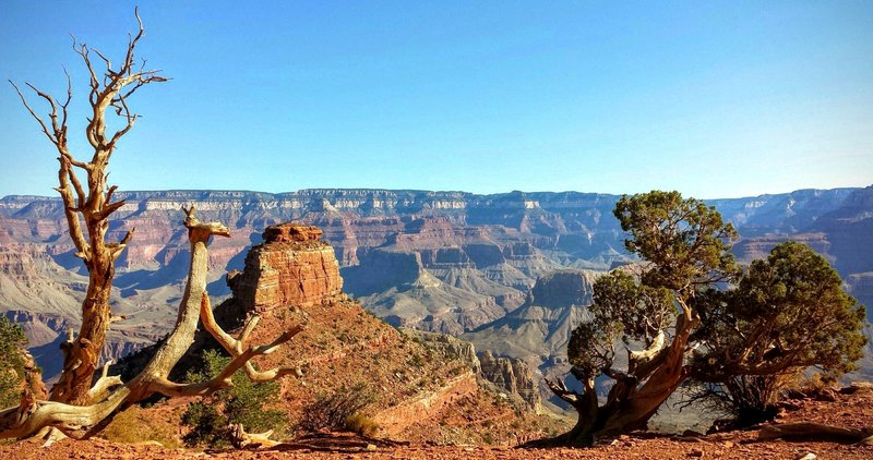 Soak up the stellar Grand Canyon views from Cedar Ridge off the South Kaibab Trail.