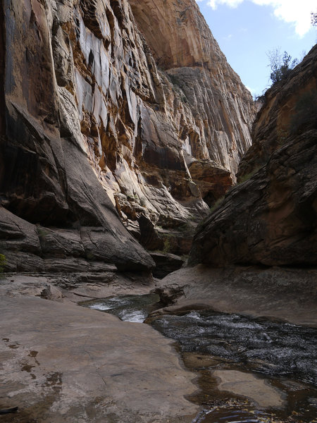 Come experience the narrows of Lower Death Hollow.