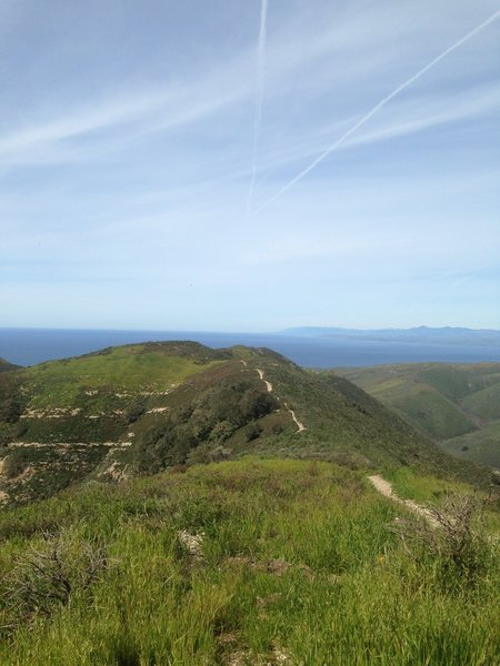 Oats Peak offers a great view of the Pacific Ocean.