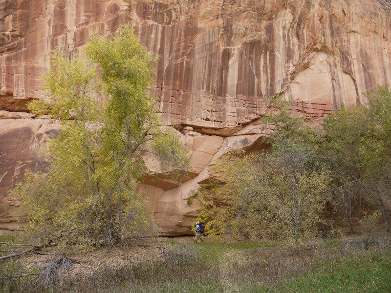 Steep canyon walls constrain your hiking along the Escalante River.