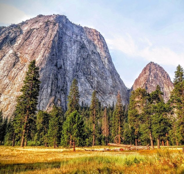 Yosemite Valley is full of spectacular views, including this one of Cathedral Rocks from a small foot trail in El Capitan Meadow.