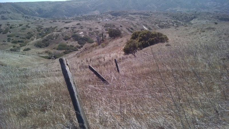 On the way to Potato Harbor, enjoy the rolling hills and flowing grasslands of Santa Cruz Island.