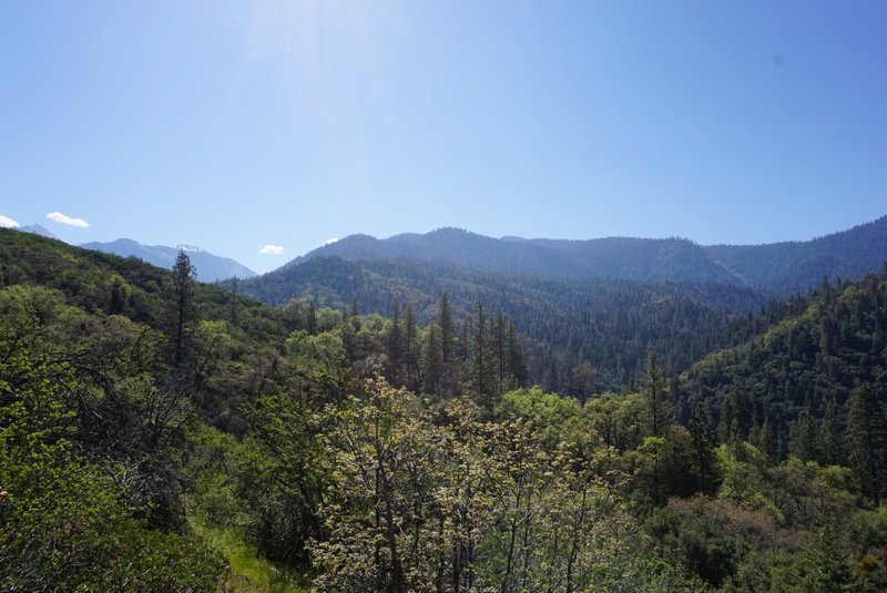 Enjoy great views from the Middle Fork Kaweah Trail.