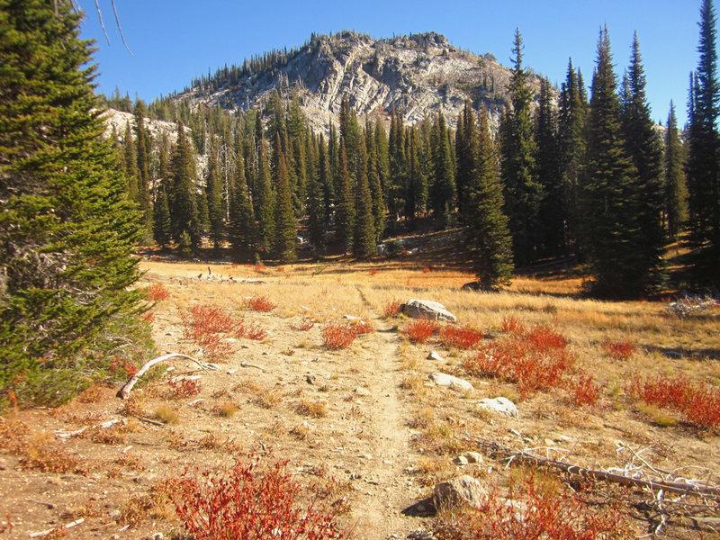 Buckhorn Mountain is beautiful when seen from the Buckhorn Summit trail.
