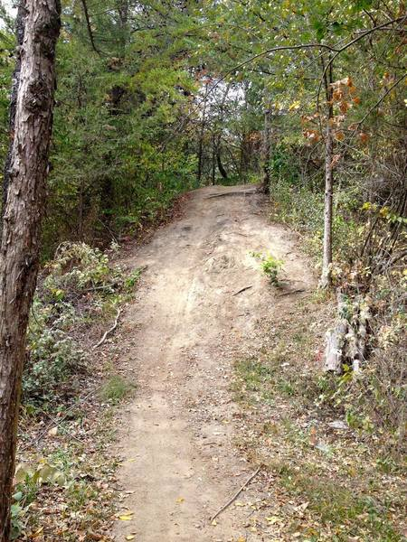 This downhill section marks the widest spot on the trail.