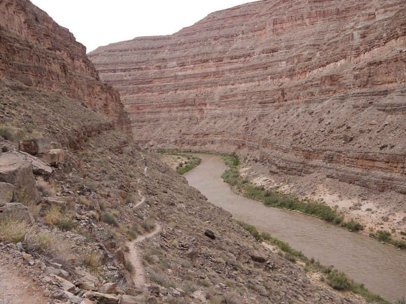 Honaker Trail begins its ascent from the San Juan River.