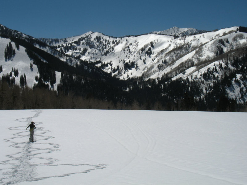 Snowshoeing up to Willow Heights leads to incredible views!