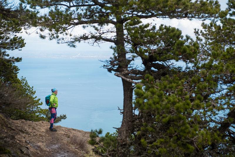 Language In 45 And 47 Stella Street: Little Summit Trail Hiking Trail, Orcas Island, Washington