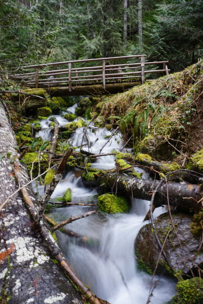 This is just one of the many bridges on this trail.