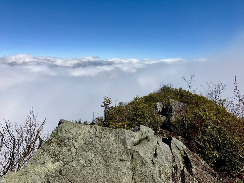Mount Cammerer Lookout Tower quite literally puts you amidst the clouds.