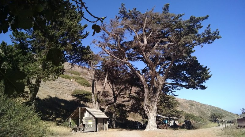 Be sure to check out Scorpion Ranch while on Santa Cruz Island.