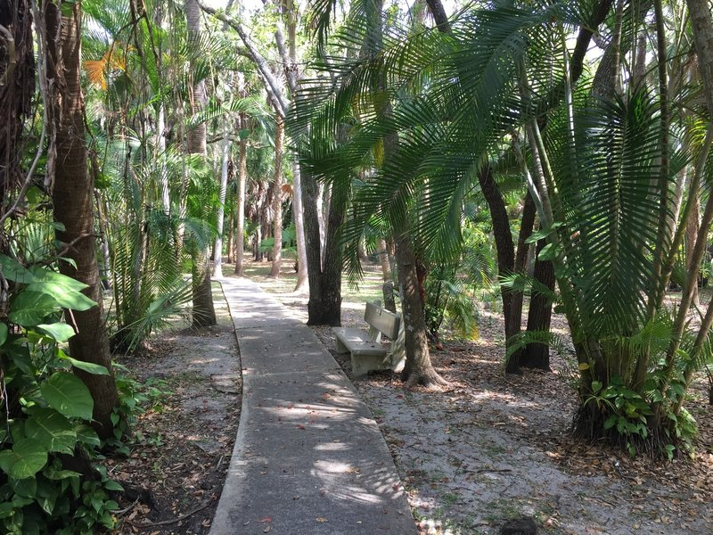 These are just a few of the 60 species of palm in the garden. Take a seat on one of the park's numerous benches and enjoy them!