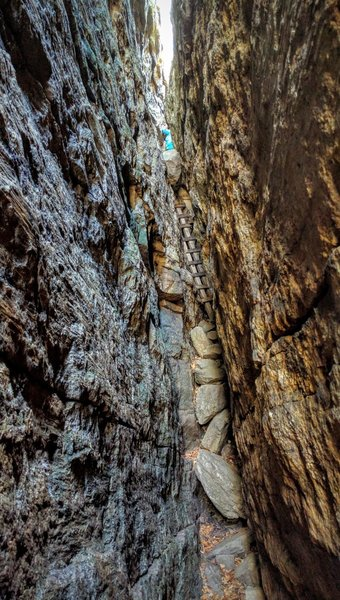 Well, you really can't go back, so finish by climbing up through the crevice to the open air above.