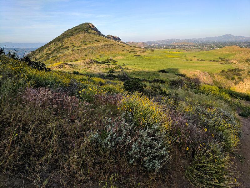 Wildflowers bloom along the climb toward Lizard Rock. On your way up, enjoy views of Mountclef Ridge and the mesa.