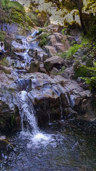 Sycamore Canyon Falls is sublime in the spring.