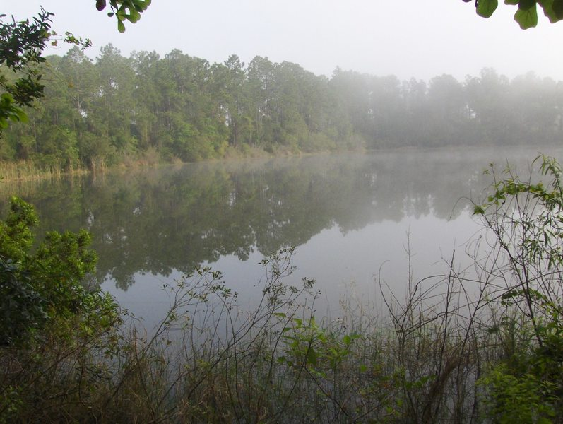 Mist floats over the lake at Trout Creek Park.