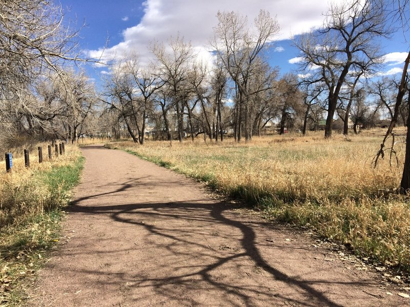 Star K Ranch Loop is a pleasant trail often with deer in the nearby fields.