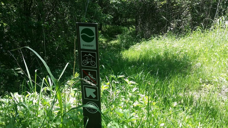These are the typical trail markers used throughout Goat Island Nature Preserve.