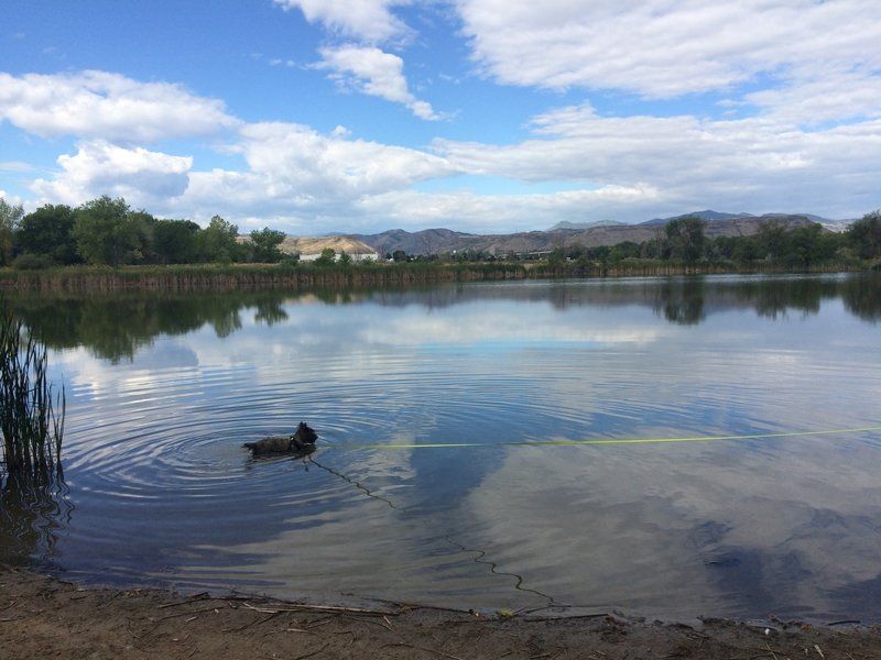 Bass Lake offers great views of the mountains beyond and a perfect place for Fido to swim. Watch out for fishing line left behind by fisherman.