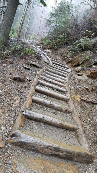 Some portions of the Alum Cave Trail have stairs.