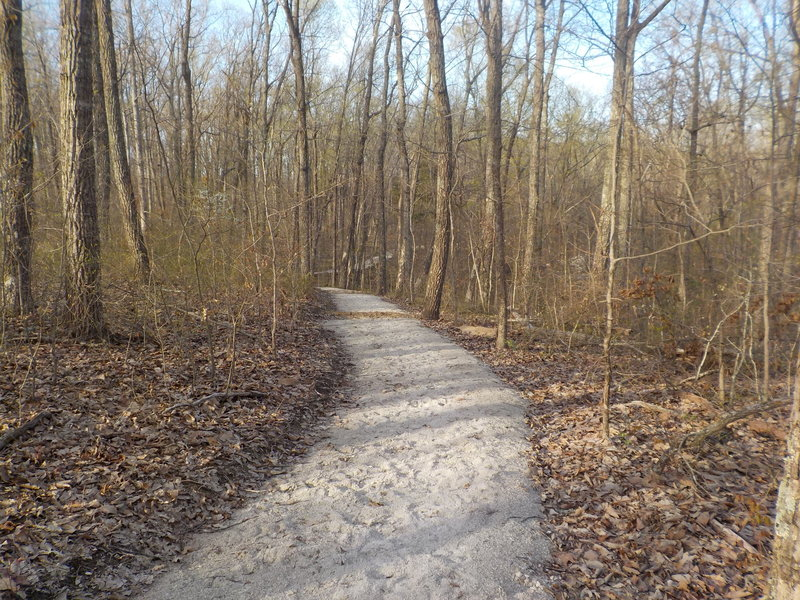 The Raymer Hollow Trail has seen some great new renovations!