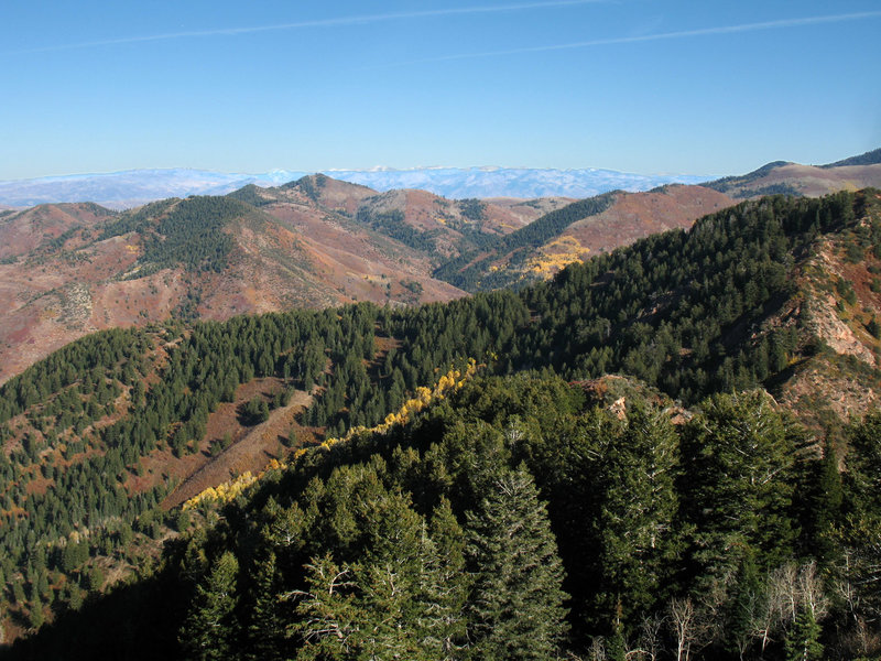 There's a hint of fall in late October looking east from Mt. Aire.