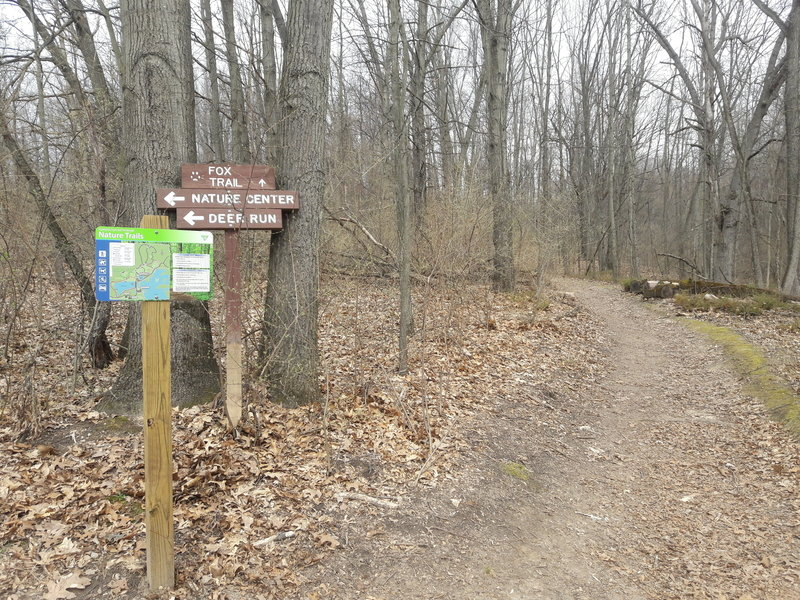 """This junction shows confusing old signs; if entering the loop from the east side, following the """"Fox Trail"""" puts you onto the new Chickadee Trail."""
