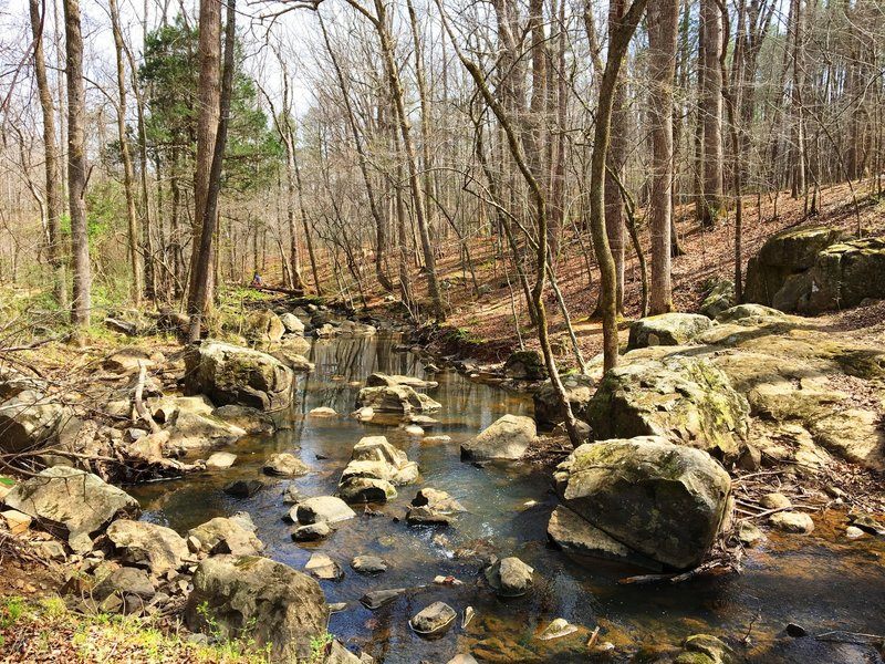 The rocky bottom of Bolin Creek follows the trail for a section.