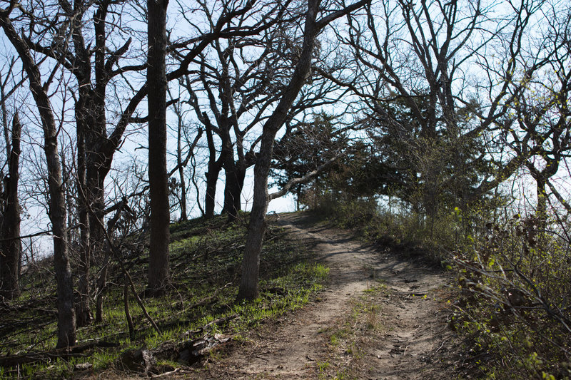 You'll encounter many hills on the Hardwood Trail.