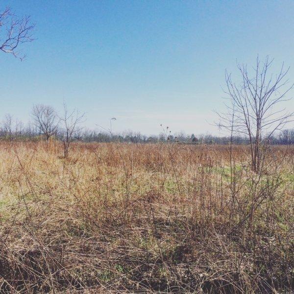 Possum Creek Pink Trail offers pleasant views of the tall-grass prairie.