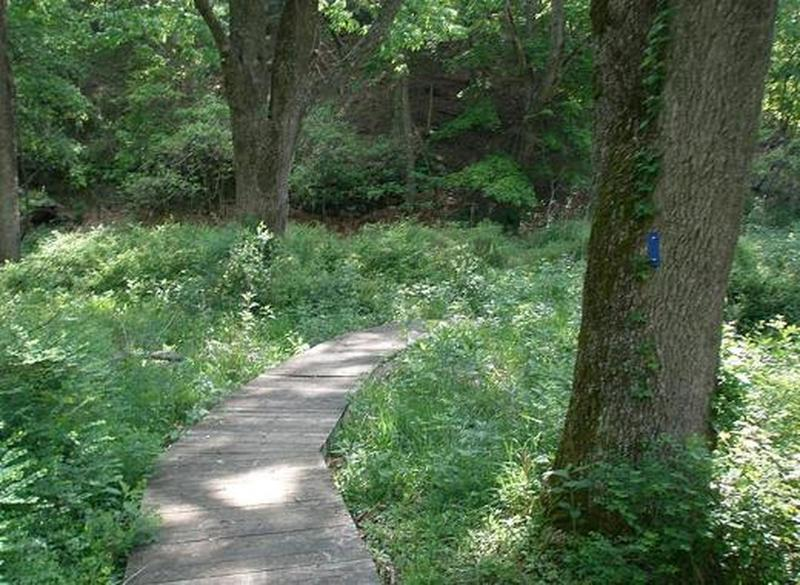 Trails in this area are well blazed and well maintained.