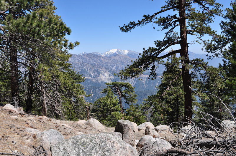 Panoramic views of Mt. Baldy are abundant along the trail to Mt. Waterman.