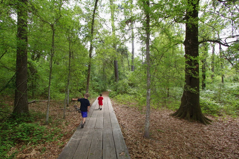 A pair of children take in the sights along the Outer Loop at Houston Arboretum.