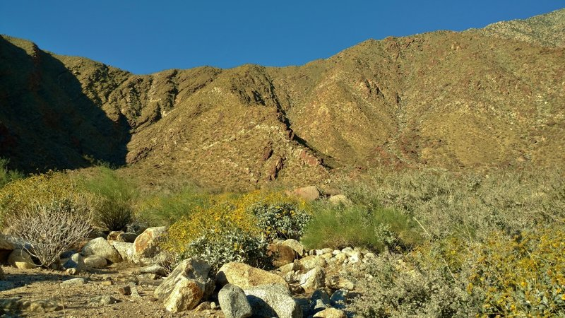 "Mountains form the Palm Canyon ""walls"" across the stream that runs down Palm Canyon."