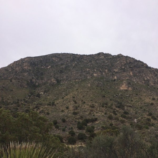 This mountain stands to the north of the Tejas Trail.