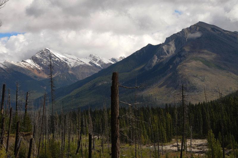 Citadel Peak is visible through the open burn area.