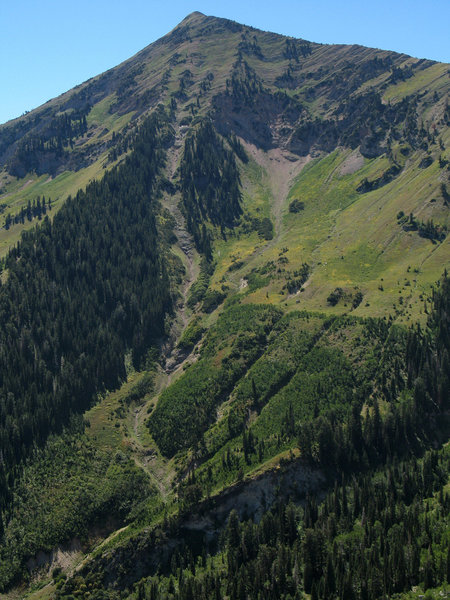 A steep chute runs down the side of Box Elder Peak.