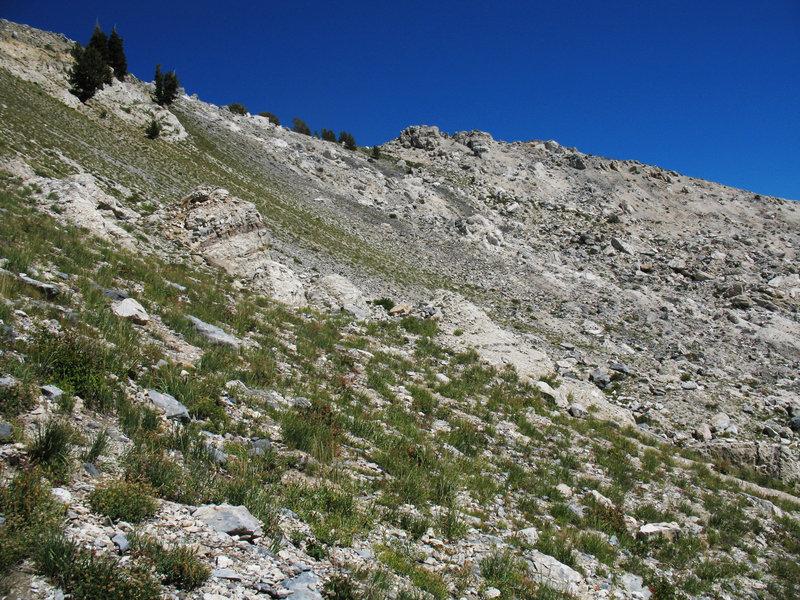 There's plenty of scree along the trail to Box Elder Peak.