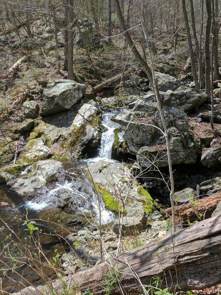 Cedar Run Falls is a pleasant companion along this section of the Cedar Run Trail.