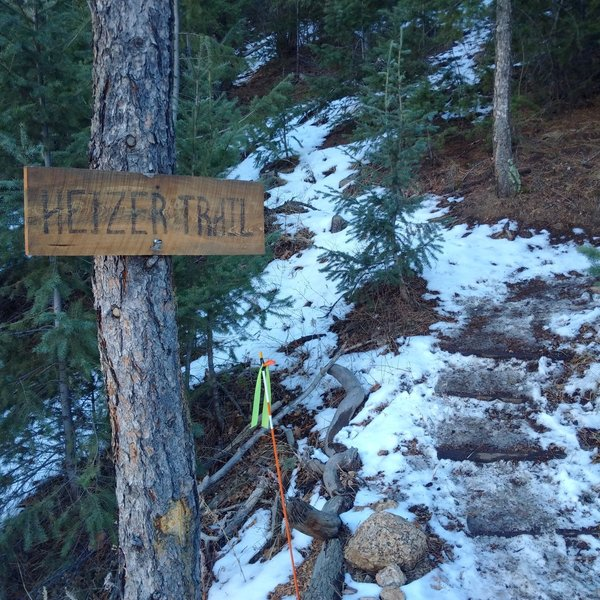 There is no parking at the trailhead, so you must walk up Anemone Road and look for this sign.
