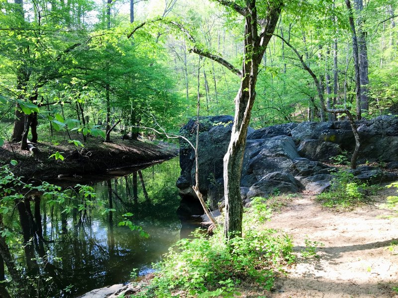 Rock outcropping on Morgan Creek.