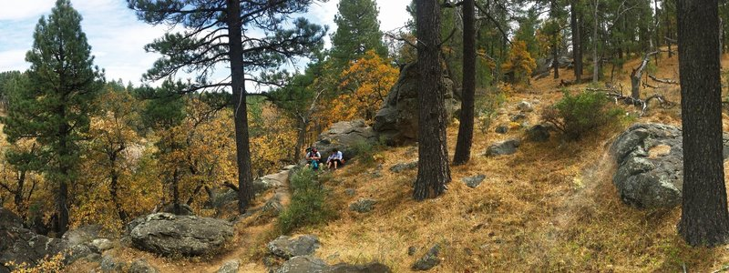 California fall colors bring a new flavor to the Sunset Trail.