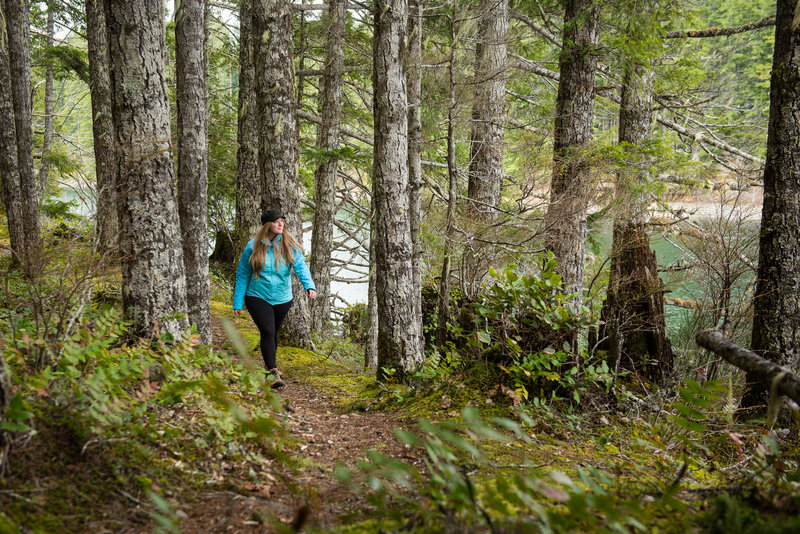 """An open forest and views over the water give the North Inlet Trail a nice """"coastal"""" feel."""