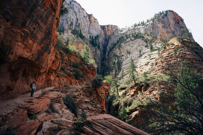 The first mile of the East Rim Trail is utterly stunning.