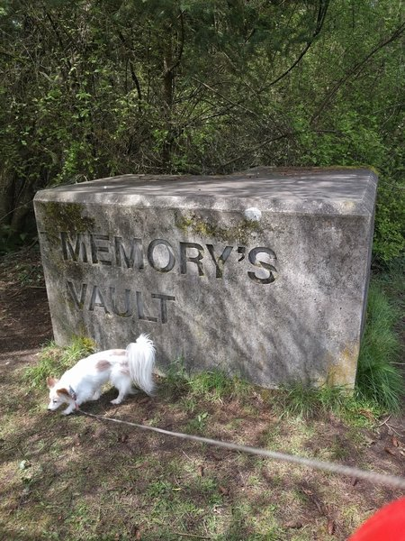This sign marks the entrance to Memory's Vault.