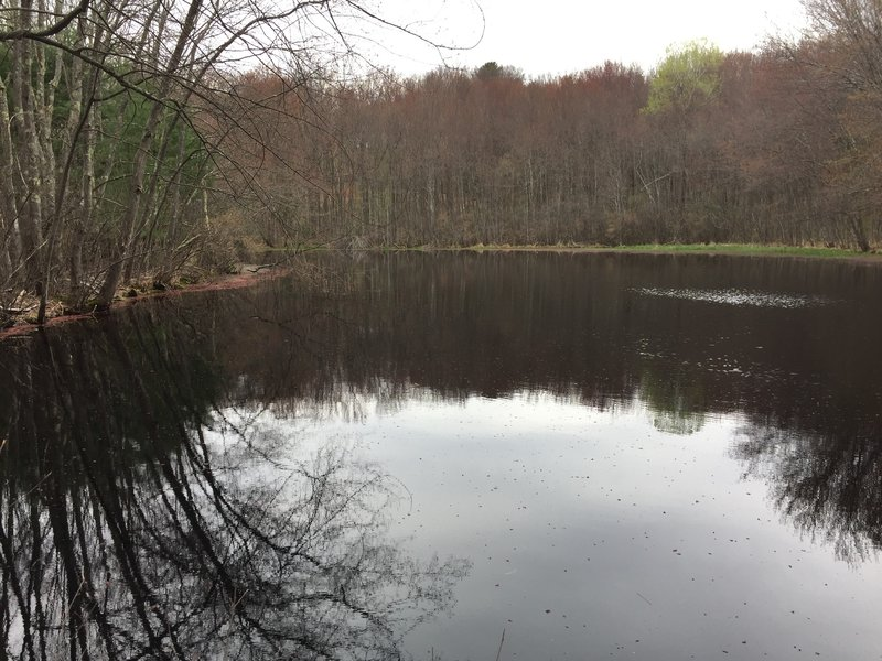 A pond greets you at the end of the trail.