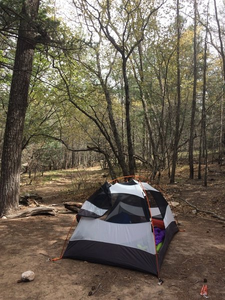 The backcountry site at Camp Texas is a pleasant spot to rest your weary bones after a day on the Tejas Trail.