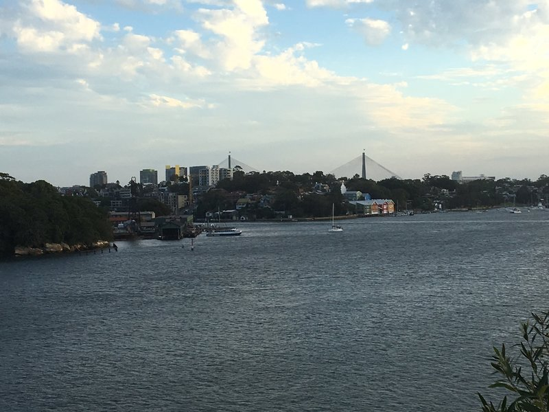Experience beautiful views of Anzac Bridge from Balls Head Lookout.